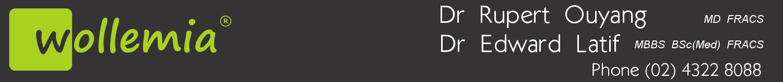 Wollemia Urology Centre logo